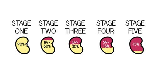 Kidney function in Stages One to Five.