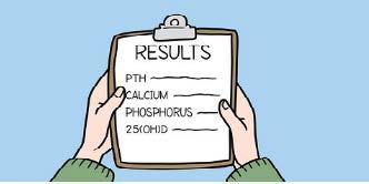 Results: PTH, calcium, phosphorus, 25(OH)D.